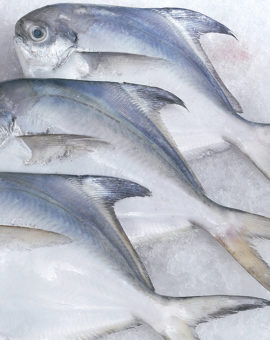 Daging & Ikan